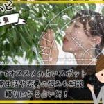 パワースポットも豊富!熊本でオススメの占いスポットや人気占い師