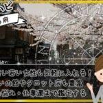 世界有数の古都!京都の占い師やパワースポットをチェック