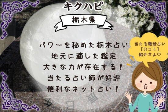 栃木占いにはパワーを秘めた占い師で地元に適した鑑定をしてくれる